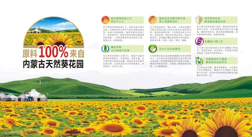 东方秀内蒙古葵花种植基地